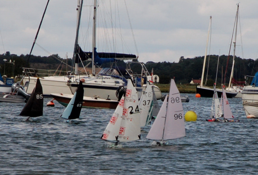 BOTTLE Boats at Waldingford 2014 -  Image by Roger Stollery